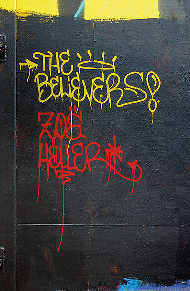 The Believers / Zoë Heller / Kapak: Sick Boy