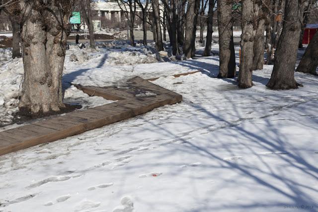 Stroll 2 - Gorki Parkı, Moskova