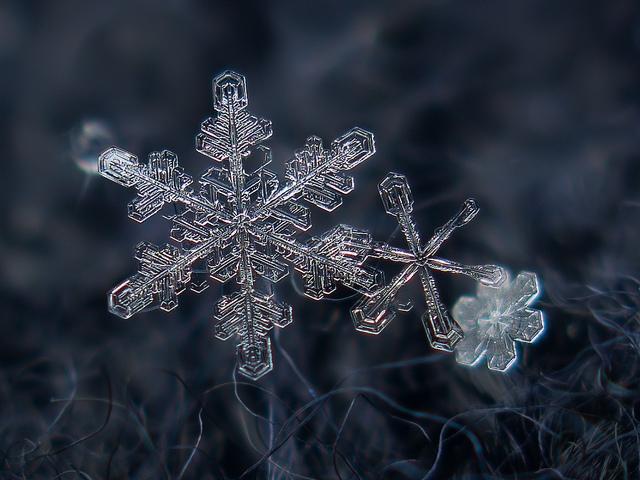 snow9